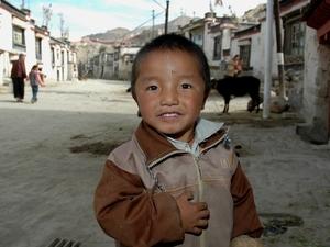 34 Kind Tibet