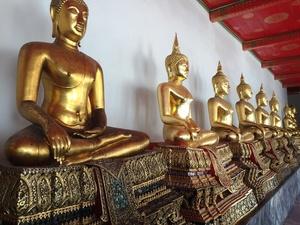 Bangkok buddha's
