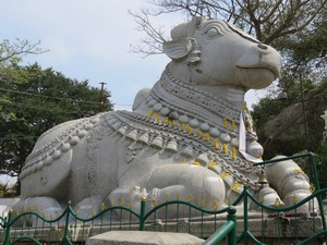 Stier Nandi Chamundi Hill Mysore