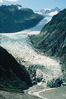 Fox Glacier Nieuw-Zeeland