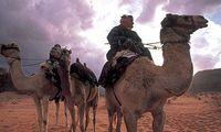 Wadi Rum Kamelensafari Groepsreis Junior Jordanie