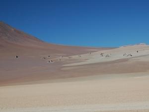 De woestijn van Dali