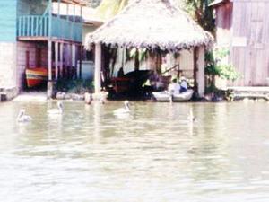 Boottocht op de Rio Dulce