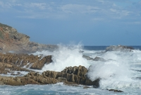 Zuid Afrika Plettenberg Bay kust Djoser
