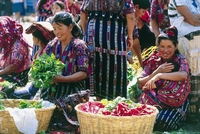 Kleurrijke markt Chichicastenango - Chichi, Guatemala. Djoser rondreis