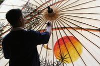 Parasol Bo Sang Thailand Djoser