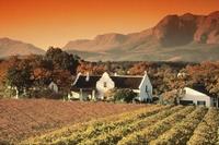 Zuid Afrika wijnboerderij Djoser