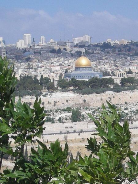 ISRAEL (8)