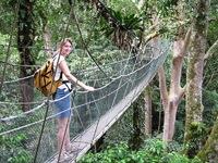 Canopy walk Maleisie Djoser