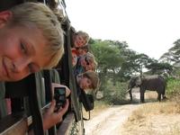 Serengeti Tanzania junior Djoser