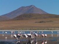 Reserva Nacional Eduardo Avaroa Chili Djoser
