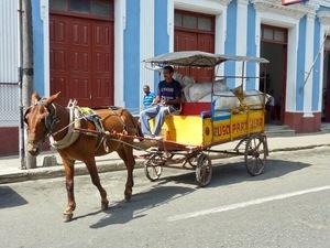 Cienfuegos paard & wagen