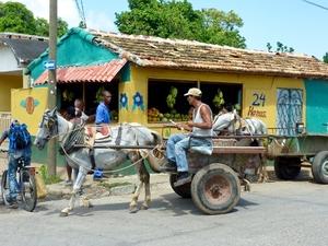 Trinidad paard & wagen
