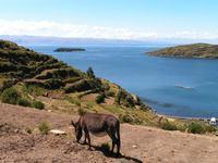 Bolivia Titicaca uitzicht djoser