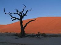 Namibie Sesriem Deadvlei Djoser
