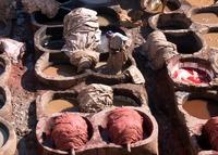 Fes Leerlooierij Marokko Djoser