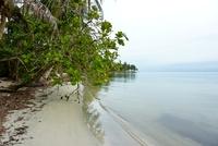 Cahuita Costa Rica Strand Djoser