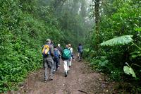 Costa Rica Wandelende mensen Djoser