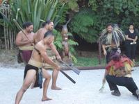 Nieuw-Zeeland Maouri Djoser