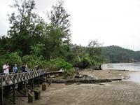 Bak nationaal park Maleisch Borneo Djoser