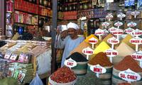 Egypte Khalili souvenirmarkt specerijen Djoser