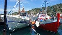 Griekse bootjes Djoser Family Kreta