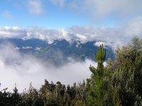 regenwoud Baños Ecuador