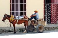 Cuba paard en wagen