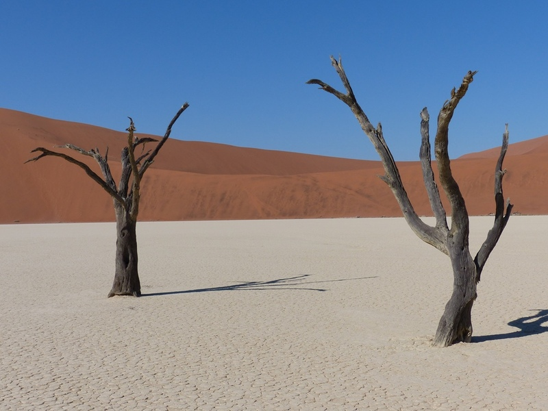Namib Naukluft - Deadvlei