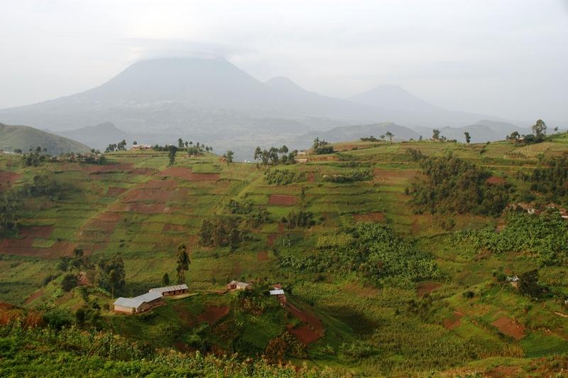 16 - Virunga