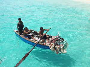 Kaapverdische eilanden