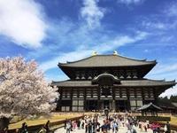 Todaiji tempel Nara Japan Djoser