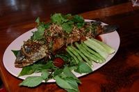 eten thailand djoser