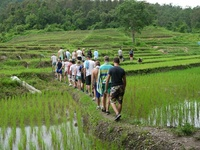 Chiang Mai wandelen omgevinf Family Thailand Djoser