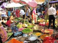 Markt India Djoser