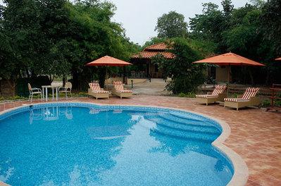 Zwembad Infinity Resort Bandhavgarh Djoser