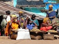 Bondastam markt Desia, India Djoser