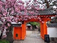 Tempeltje Kyoto Japan