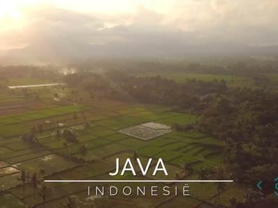Proef de sfeer van Java met Djoser