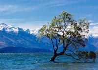 Lake Wanaka Nieuw-Zeeland