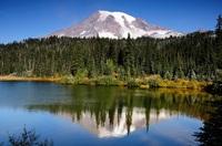 Mt. Rainier berg Amerika