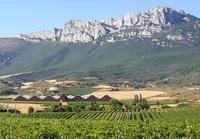 Rioja wijn bergen Spanje