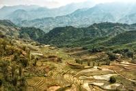 Sa Pa rijstveld Vietnam