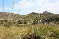 Park Natural de Llevant Mallorca