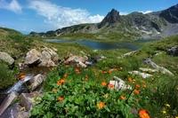 Rila meer Bulgarije