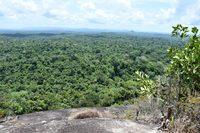 Uitzicht Fredberg Suriname