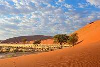Sossusvlei duinen Namibië