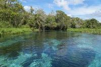 Djoser Brazilie Bonito snorkelen Rio Sucuri