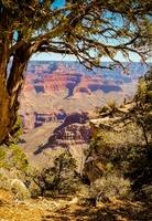 Djoser Amerika USA Grand Canyon
