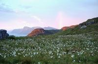 Runde eiland Noorwegen